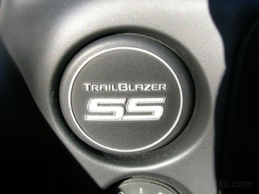 "Dash Plug ""SS"" Inlay"